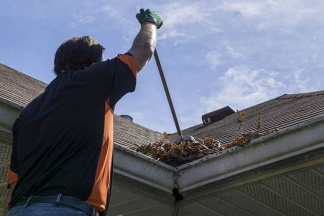 Gutter Cleaning in Terling